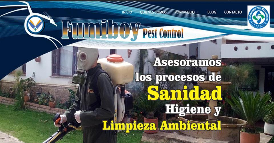 fuiboy_paginas_web_sitios_web