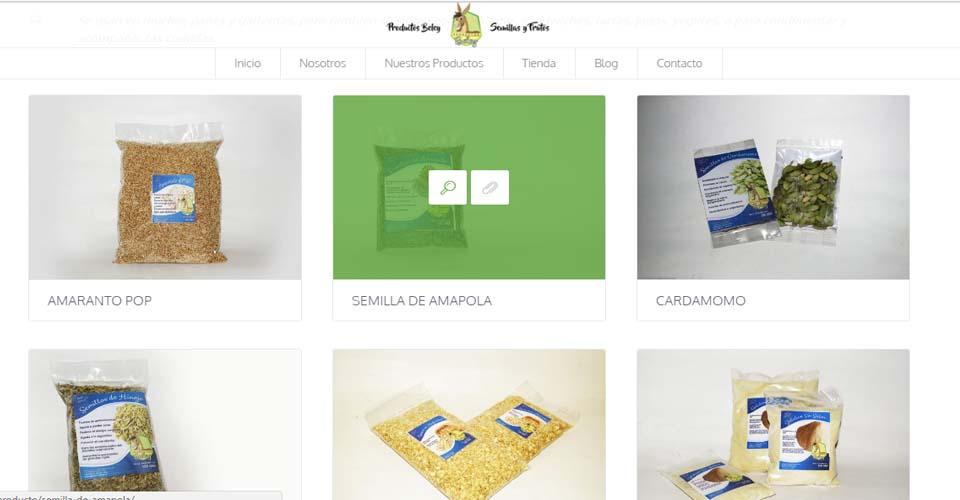 productos_diseno_web_tienda_virtual_2